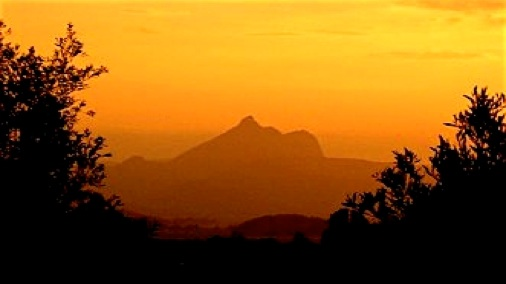 Image result for Wollumbin at dawn